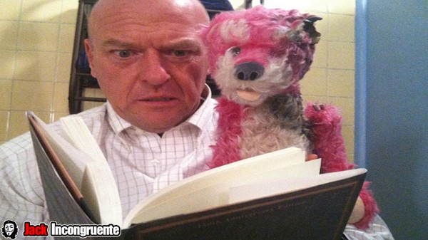 oso teddy rosado breaking bad