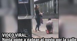 Novia lo pone a gatear por la calle para perdonar infidelidad