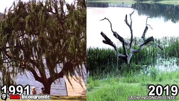 Locations movie my first kiss 1991 before and after tree near the lake